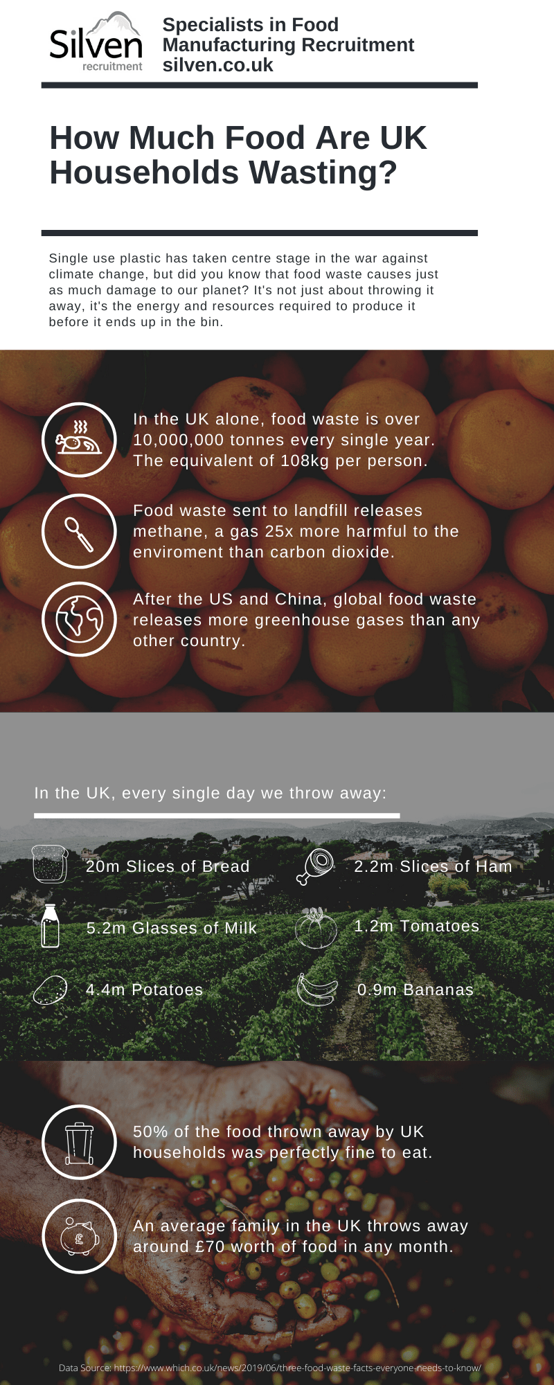silven food waste infographic